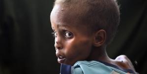 Svjetski dan hrane: 821 milion ljudi u svijetu pati od neuhranjenosti