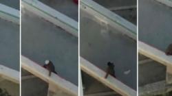 Dramatični snimak: Nezapamćena bura u Splitu nosi ženu preko mosta!