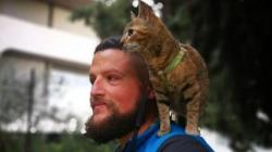 Kako je napuštena mačka iz BiH proputovala svijet (Foto/ Video)