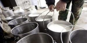 U Tuzlanskom kantonu zbog smanjenja poticaja za mlijeko gase se farme