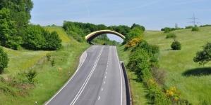 12 zadivljujućih mostova za životinje