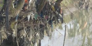 Obilježava se Svjetski dan zaštite okoliša
