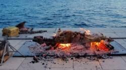 Zadar: Nasred rive ispekli janje
