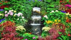 Nagrade za najljepše uređeno dvorište, baštu i vrt u Tuzli (VIDEO)