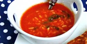 Hladna supa od paradajza s rižom