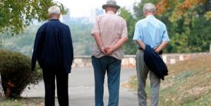 Za godinu više od 10.000 novih penzionera: Ko će puniti penzione fondove