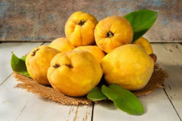 DUNJA – vitaminska bomba jeseni