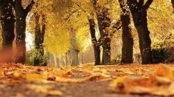 Ljeto u oktobru i narednih dana: Temperature i do 27 stepeni