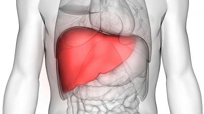 Kašičica prije jela, vaša jetra će biti brzo obnovljena: Skroz ćete očistiti organ