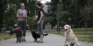 Osnivač udruženja PETA poručuje: Ne požurujte psa dok šeta, pustite ga da istražuje