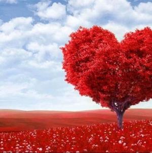 U svijetu se danas slavi Dan zaljubljenih