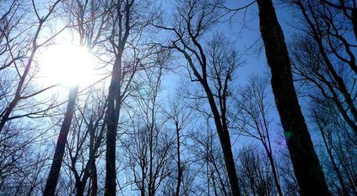 Nakon tmurnog vikenda nova sedmica donosi sunce i porast temperatura