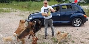 Senad Isaković već dvadeset godina hrani pse lutalice: Ovako izgleda jedan dan u njegovom životu