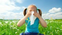 Djeca alergičnih roditelja i sama sklonija alergijama