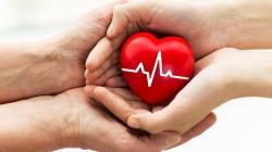 Donorska mreža BiH: Eutanazija nema nijednu dodirnu tačku s eksplantacijom organa