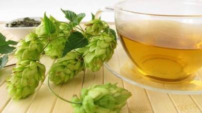 Čaj od hmelja pomaže kod nesanice