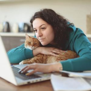 Mačke i komunikacija: Kada vaša mačka uvrne rep na gore, to ima specijalno značenje