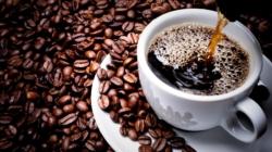 Kafa i sve što ste znali ili niste znali o njoj