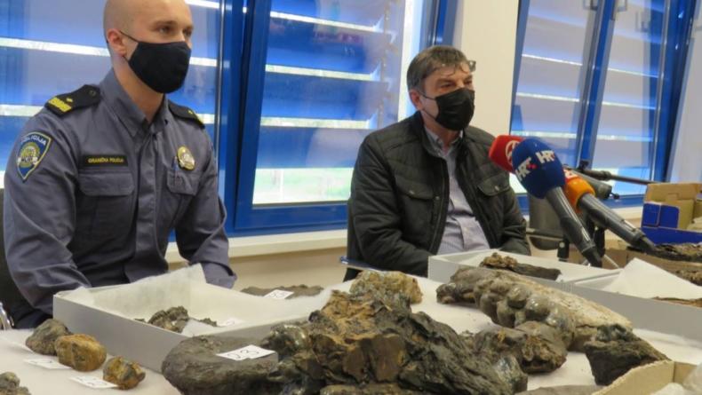 Kod Gradiške uhvatili muškarca s vrijednim fosilima praslona: 'Ovo vidim prvi put u životu'
