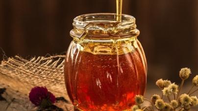 Zašto svaki dan treba pojesti bar jednu kašiku meda